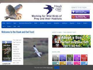 hawkandowl.org - hawkandowl.org